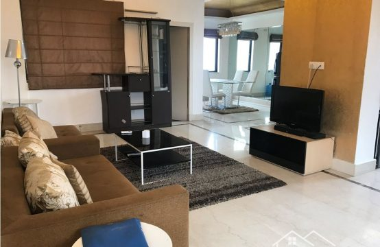 2bhk Luxurious  Penthouse Apartment for Rent