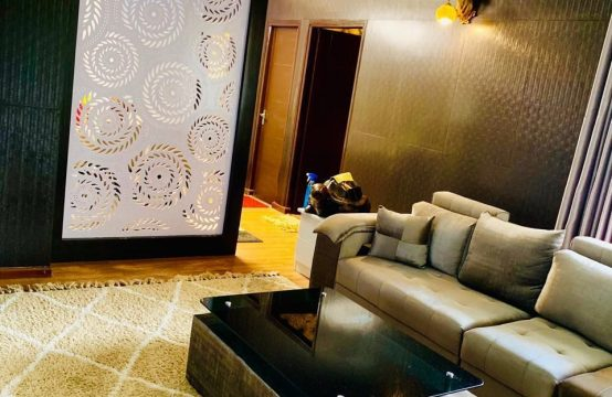 A Luxurious  furnished Apartment is for Rent