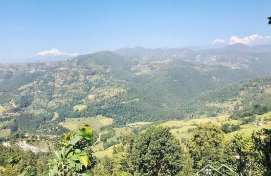 17 ropani Land for Sale in Izara Tole, Dhading