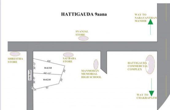 Land for Sale : हात्तिगौडामा ९ आना जग्गा बिक्रीमा