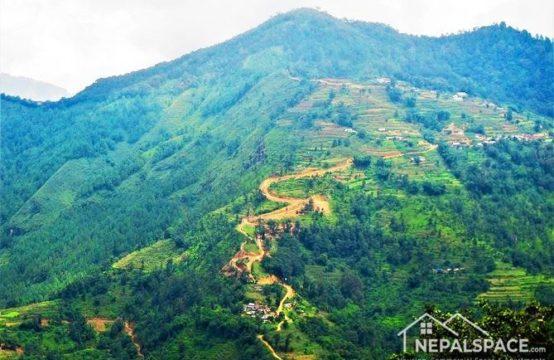 Land for Sale : इन्द्रदह, चन्द्रागीरी नगरपालिकामा ६७ रोपनी जग्गा बिक्रिमा
